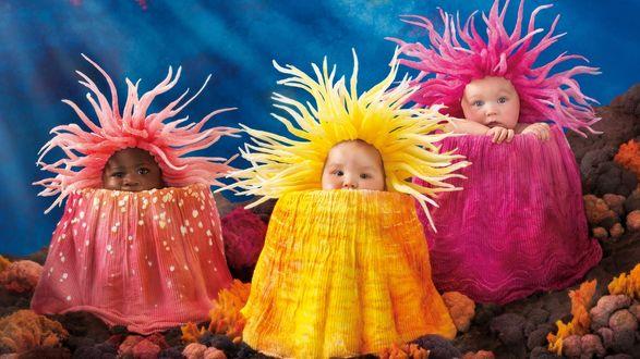 Обои Детки в костюмах подводных морских обитателей