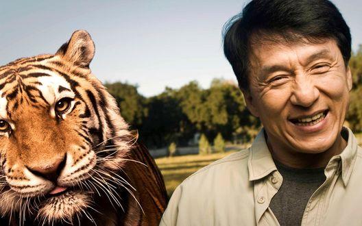 Обои Джеки Чан с тигром