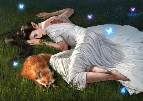 Обои Девушка - эльфийка лежит на траве рядом с лисой, ву Gan Feng