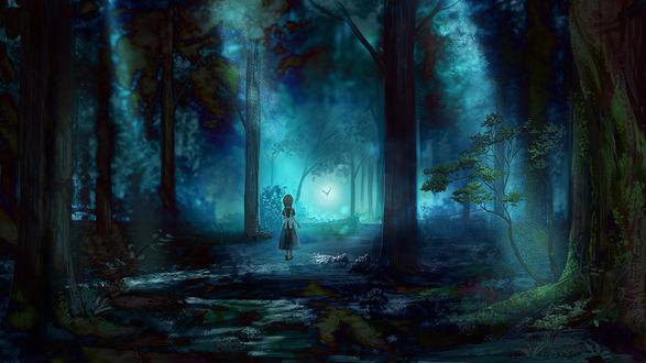 Обои Девочка следует за бабочкой по ночному лесу