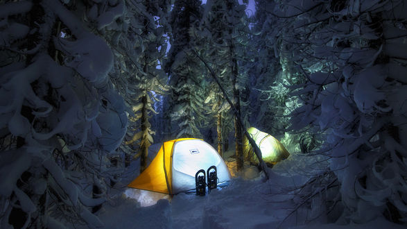 Обои Палатки в ночном зимнем лесу
