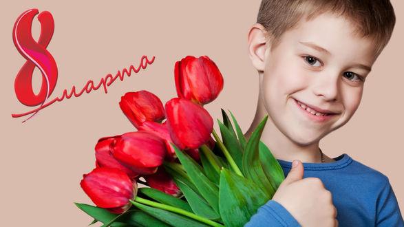 Обои Мальчик с букетом тюльпанов на светло-коричневом фоне (8 марта)