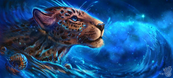 Обои Леопард в воде на фоне ночного звездного неба, by FlashW