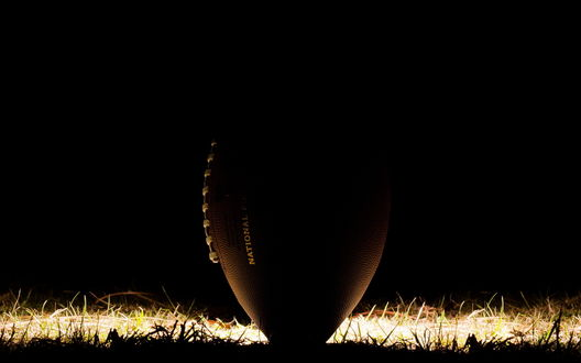 Обои Мяч для регби на траве (national)