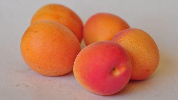 Обои Спелые абрикосы на сером фоне