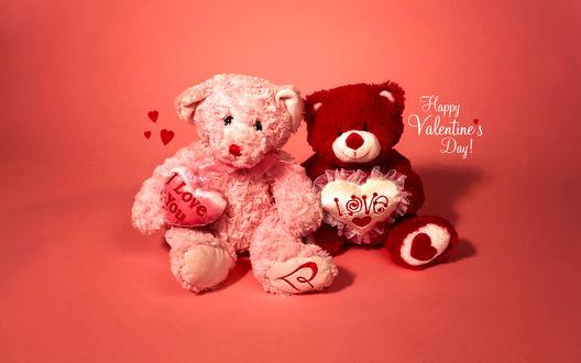Обои Два плюшевых медвежонка на розовом фоне (Happy Valentines Day!)