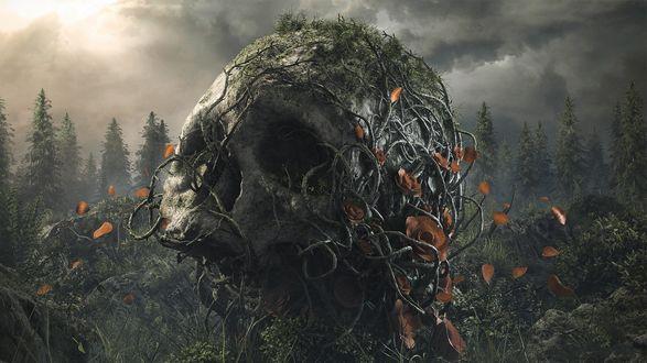 Обои Поросший лианами большой череп