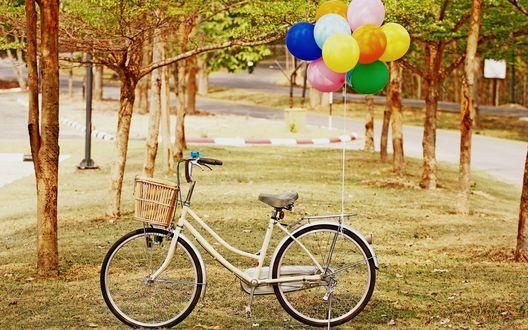 Обои Велосипед с разноцветными шариками стоит среди деревьев