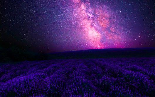 Обои Поле лаванды на фоне космического неба
