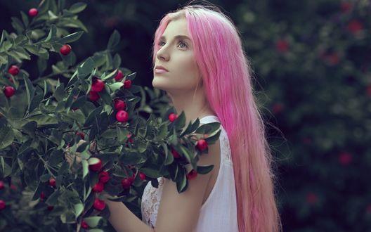 Обои Девушка с розовыми волосами стоит возле дерева с ягодами