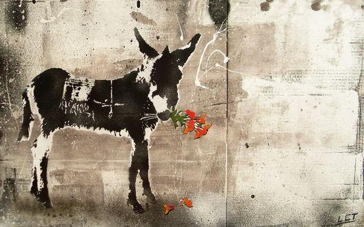 Обои Рисунок ослика с цветами на стене