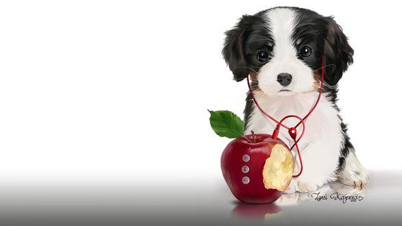 Обои Милый щенок с плеером в виде яблока, на белом фоне, by Kajenna