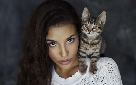 Обои Полосатый котенок сидит у девушки на плече