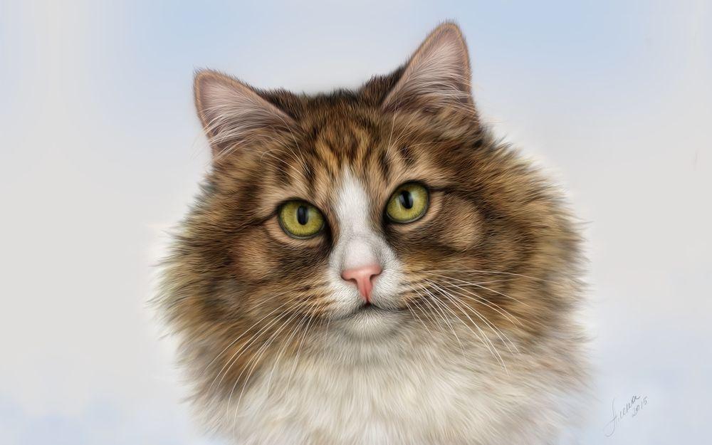 У черного моря к пушистому котенку от светлого платья