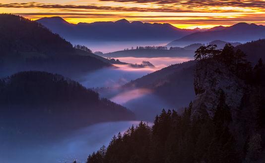 Обои Туман в долине среди фиолетовых холмов заросших лесом на закате