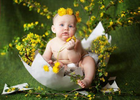 Обои Ребенок с желтыми цветами вылупился из яйца