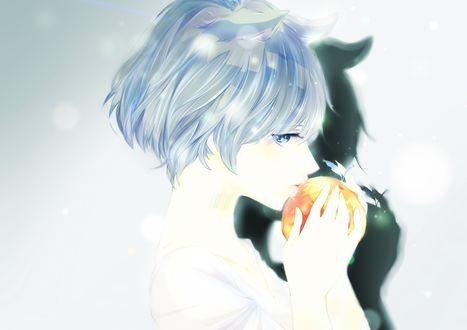 Обои Неко-девушка ест яблоко