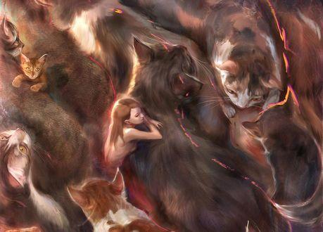 Обои Девушка среди множества кошек, by ivangod