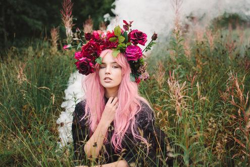 Обои Девушка с розового цвета волосами, с венком из роз на голове сидит в поле