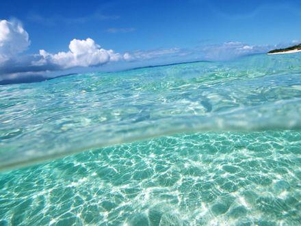Обои Съемка морского дна через толщу прозрачной воды