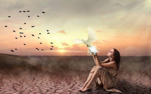 Обои Девушка сидит на потрескавшейся земле, в ее магических руках появляется белый голубь