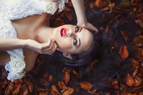 Обои Ярко накрашенная брюнетка в белом кружевном платье с розочками лежит в опавшей осенней листве, Maja Topcagic Photography