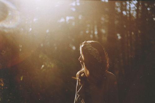 Обои Девушка, освещаемая лучами солнца, стоит в лесу