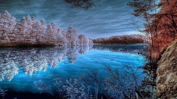 Обои Под хмурым небом голубая гладь реки. На одном берегу залиндевевшие деревья, на другом все еще в разноцветном осеннем наряде