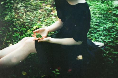 Обои Девушка в черном платье держит на ладони зеленый листок