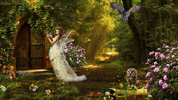 Обои Девушка-фея в сказочном лесу