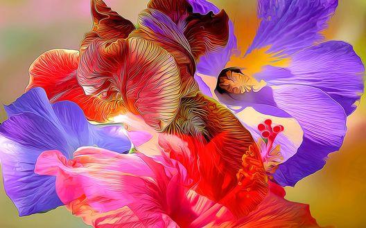 Обои Абстракция из разноцветных лепестков петушков