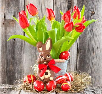 Обои Шоколадный кролик с бантом и красные тюльпаны в ведре, рядом с которыми разложены красные пасхальные яйца