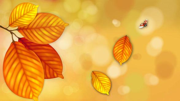 Обои Божья коровка в полете и осенние листья на желто-оранжевом фоне с бликами