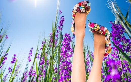 Обои Женские ножки в туфельках из цветов в окружение сиреневых колокольчиков на фоне ясного неба