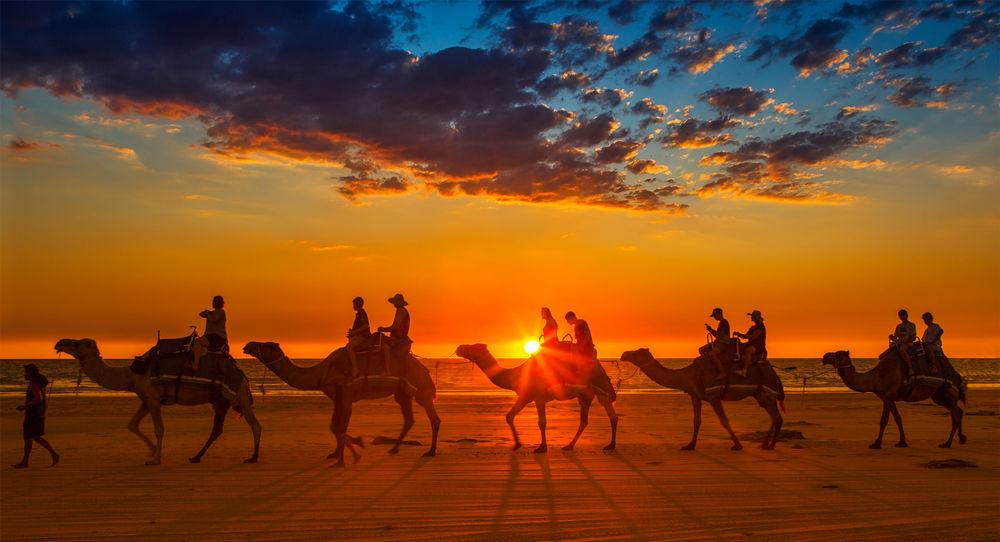 Обои Караван верблюдов с людьми на фоне заката, фотограф Margaret Morgan на  рабочий стол