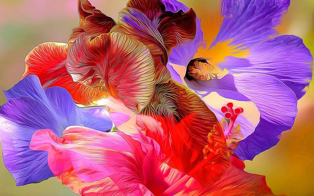 обои абстракция цветы для рабочего стола