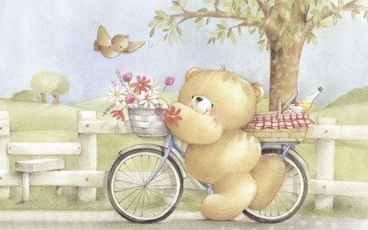 Обои Медвежонок стоит около велосипеда, к нему подлетает птичка