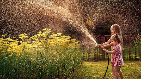 Обои Дети веселятся, поливая из шланга грядки