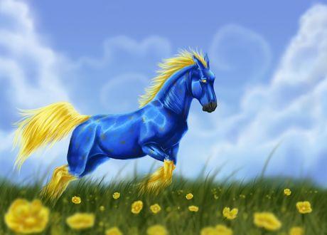Обои Голубой конь с желтой гривой и хвостом на фоне неба