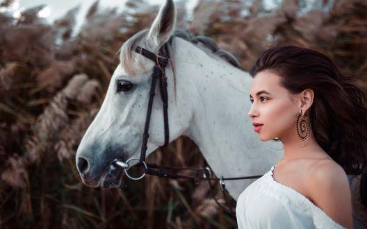 Обои Алия Ландо / Aliya Landoв профиль, стоит рядом с белой лошадью, фотограф Иван Горохов