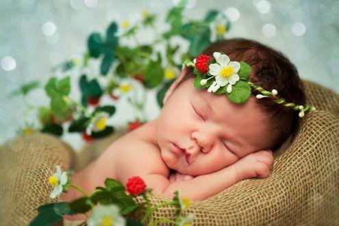 Обои Спящий младенец с веночком из цветов на голове