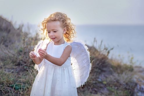 Обои Девочка белом платье и белыми крыльями ангела держит белые перья в руках на размытом фоне