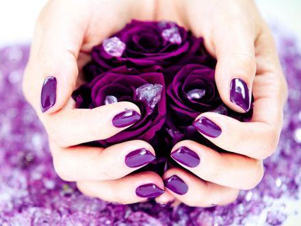 Обои Цветы в руках с фиолетовым маниюром
