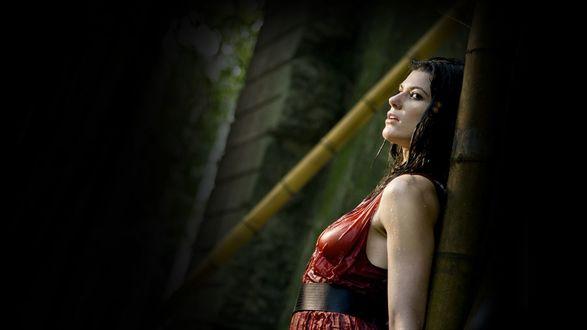 Обои Брюнетка в мокром красном платье стоит, прижавшись спиной к стволу бамбука