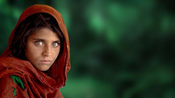 Обои Афганская девочка с красивыми зелеными глазами в рваной красной накидке смотрит на нас, фоторграф Стив МакКарри