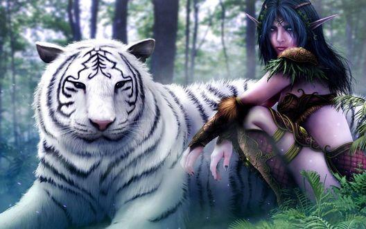 Обои Девушка эльф сидит рядом с лежащим белым тигром в лесу