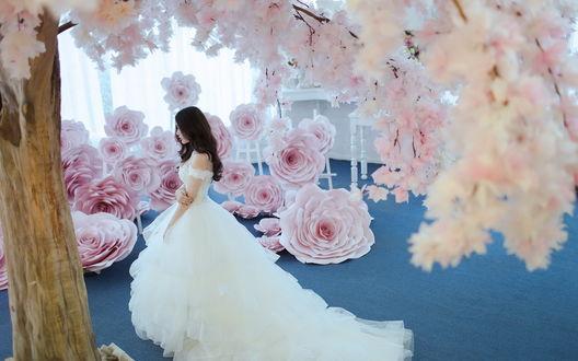 Обои Азиатка в белом платье с пышной юбкой позирует среди цветков сакура