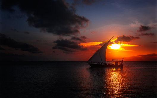 Обои Занзибарские рыбаки на парусной лодке плывут по закатному морю. От Александра Вивчарика