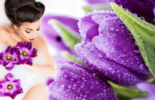 Обои Девушка в ванне с молоком и цветами
