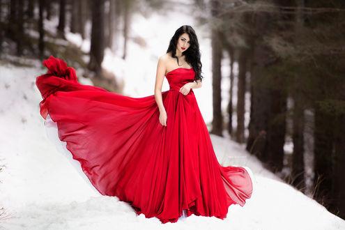 Обои Темноволосая девушка в длинном пышном красном платье идет по заснеженному лесу, глядя на нас, by Miki Macovei